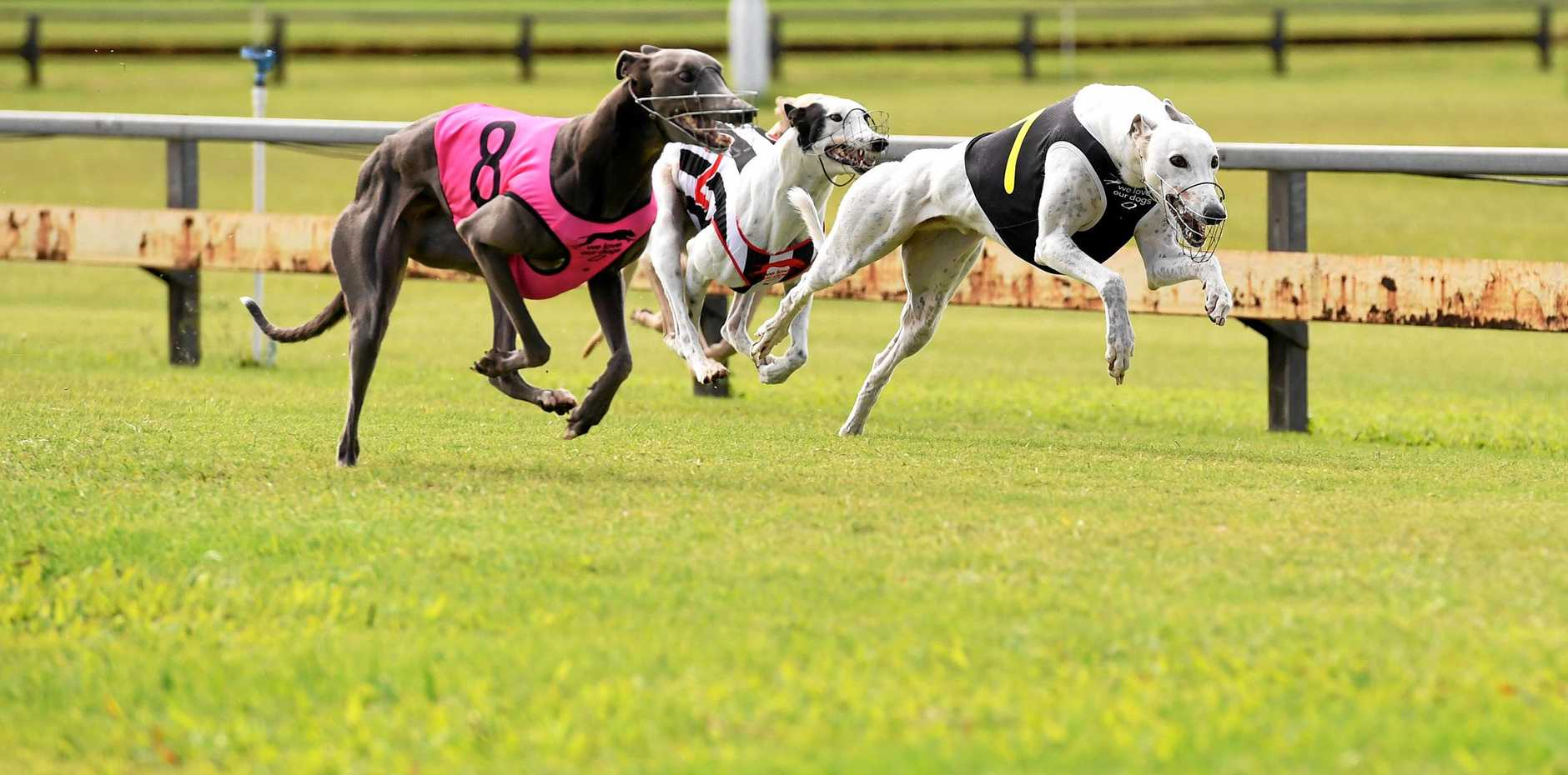 HISTORIC: Race one in Bundy was won by No. 8 Glamorous Pins, trained by Laurence Thomas.