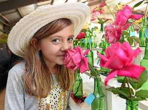 Fraser Coast Show has blooming good program
