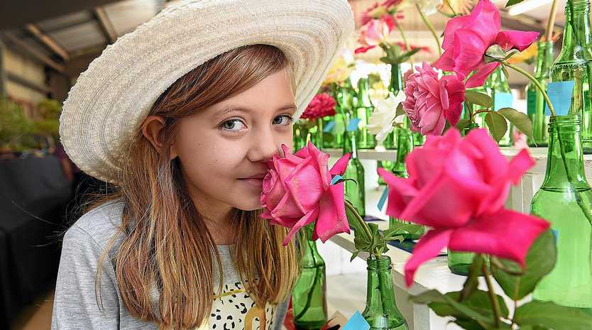 Hervey Bay's Stella Watkins checked out this gorgeous roses in the horticulture pavilion at last year's show. There's set to be plenty more on show this year.