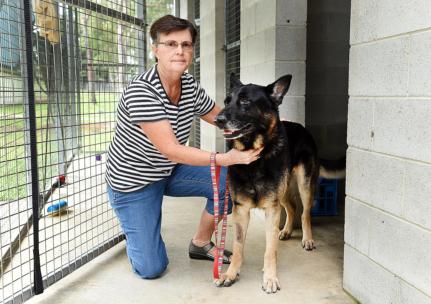 TOUGH TIME: Maryborough Animal Refuge president Maureen England with five-year-old Boofy who is up for adoption.