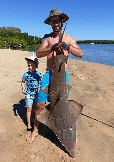 Craig Petzer and his son Colten, 5, with a shovel nose shark caught at Eimeo Creek.