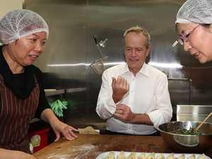 Shorten cooks up democracy dumplings