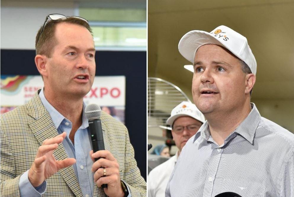 A political expert has predicted a Coalition loss, sending Sunshine Coast MPs into political wilderness.