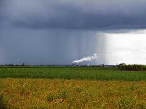 Showers on Bundy's horizon for next week