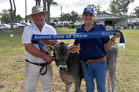 Owen Brown with the cutest cow of the show, brown swiss Sundar Sovereign Lilly with QDO Communications Manager Sarah Ferguson at the Gympie Show today.