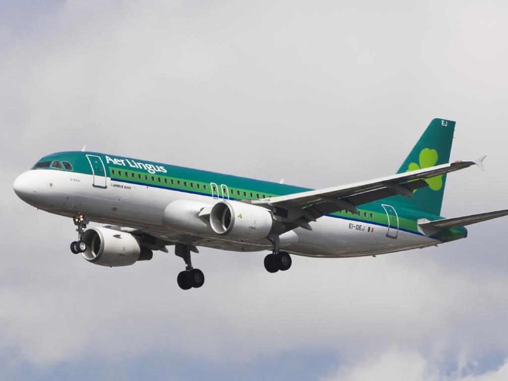 Irish airline Aer Lingus has found a solution to the age-old armrest struggle.