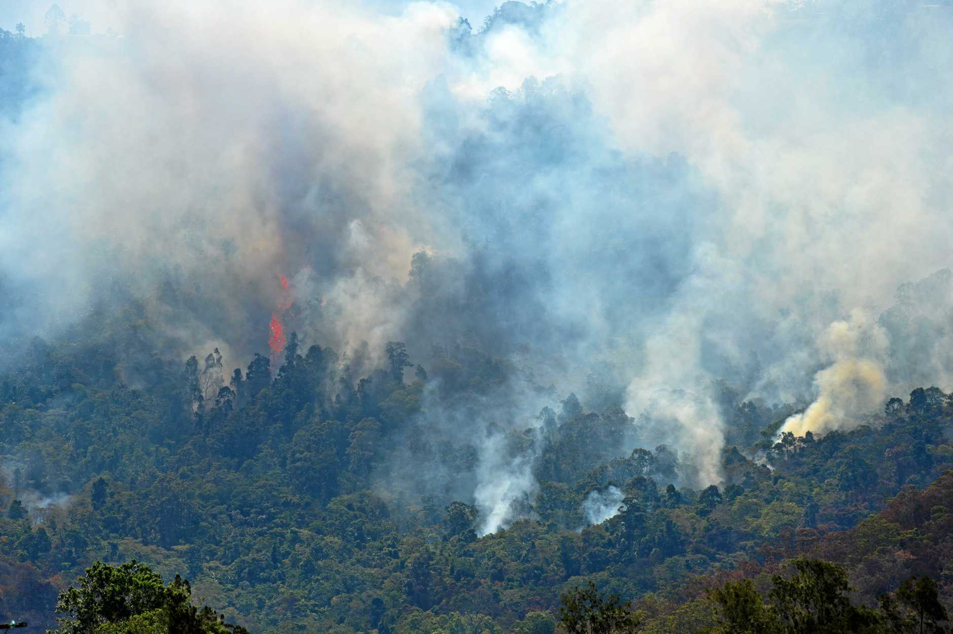UNDER THREAT: Flames leapt above the rainforest as the fires threatened Eungella.