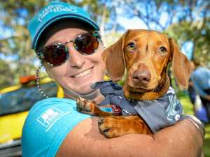 GALLERY: Million Paws Walk lights up Tannum Beach