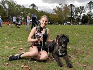 Toowoomba Million Paws Walk 2019