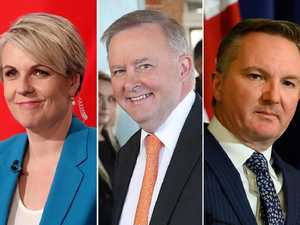 Albo's bold pitch for Labor leadership