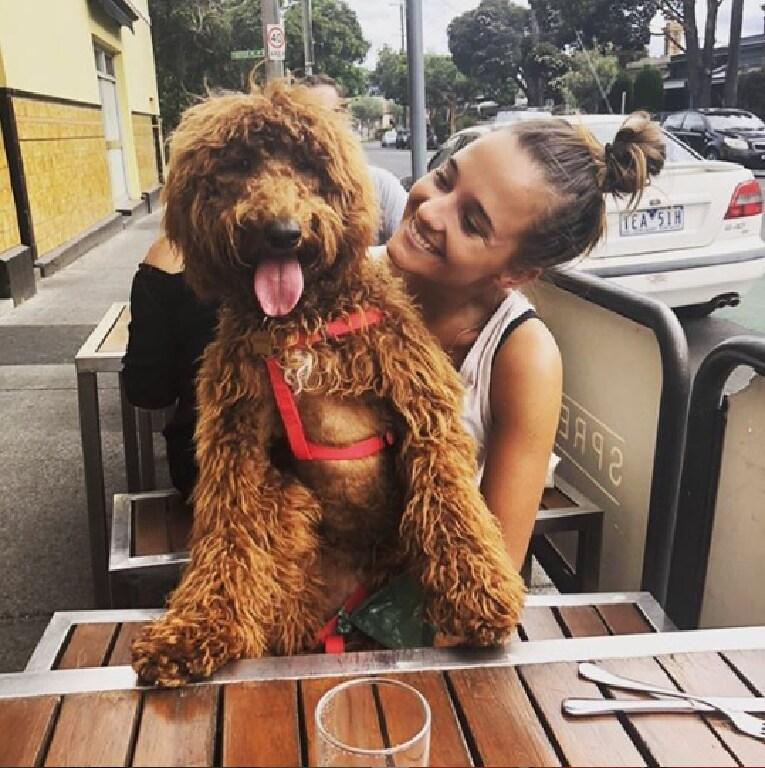 Tom Lynch's dog Gryff and girlfriend Olivia.