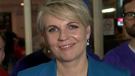 Tanya Plibersek election night. Picture: ABC News