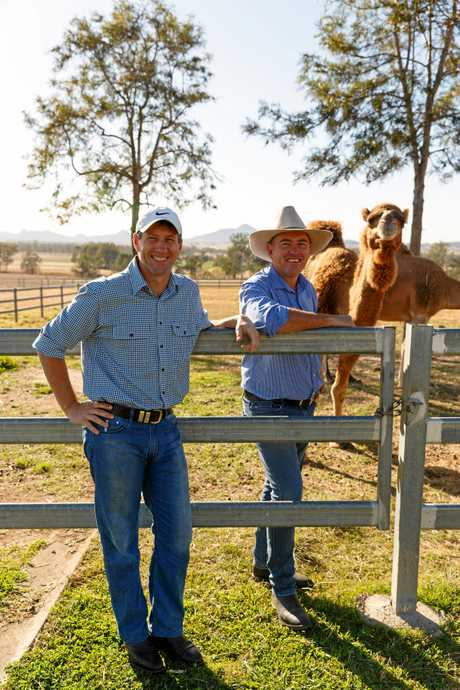 Founders Jeff Flood and Paul Martin at Summer Land Camels. Photo by Christine Sharp