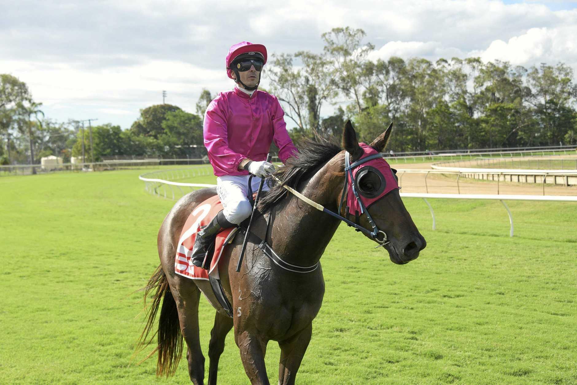 CHAMPION EFFORT: Jockey Justin Stanley has ridden 100 winners for the second successive racing season.