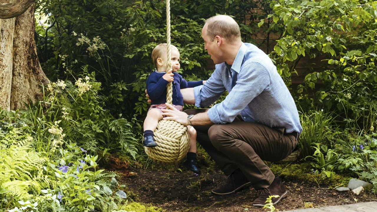 Prince William and Prince Louis.