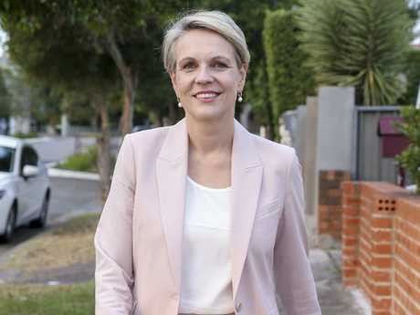 Labour deputy leader Tanya Plibersek announced her shock decision not to run for the party's top job today. Picture: Justin Lloyd.