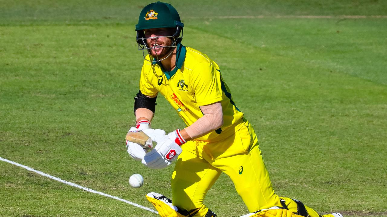 Australia's David Warner can expect plenty of attention from fans of rival teams at the World Cup.