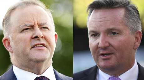 Anthony Albanese and Chris Bowen are frontrunners for the Labor leadership. Picture: Bianca De Marchi/Lukas Coch/AAP