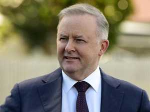 'I'm confident': Albo's pitch for leadership
