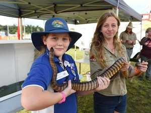 Fraser Coast Show 2019 - Gundiah State School student