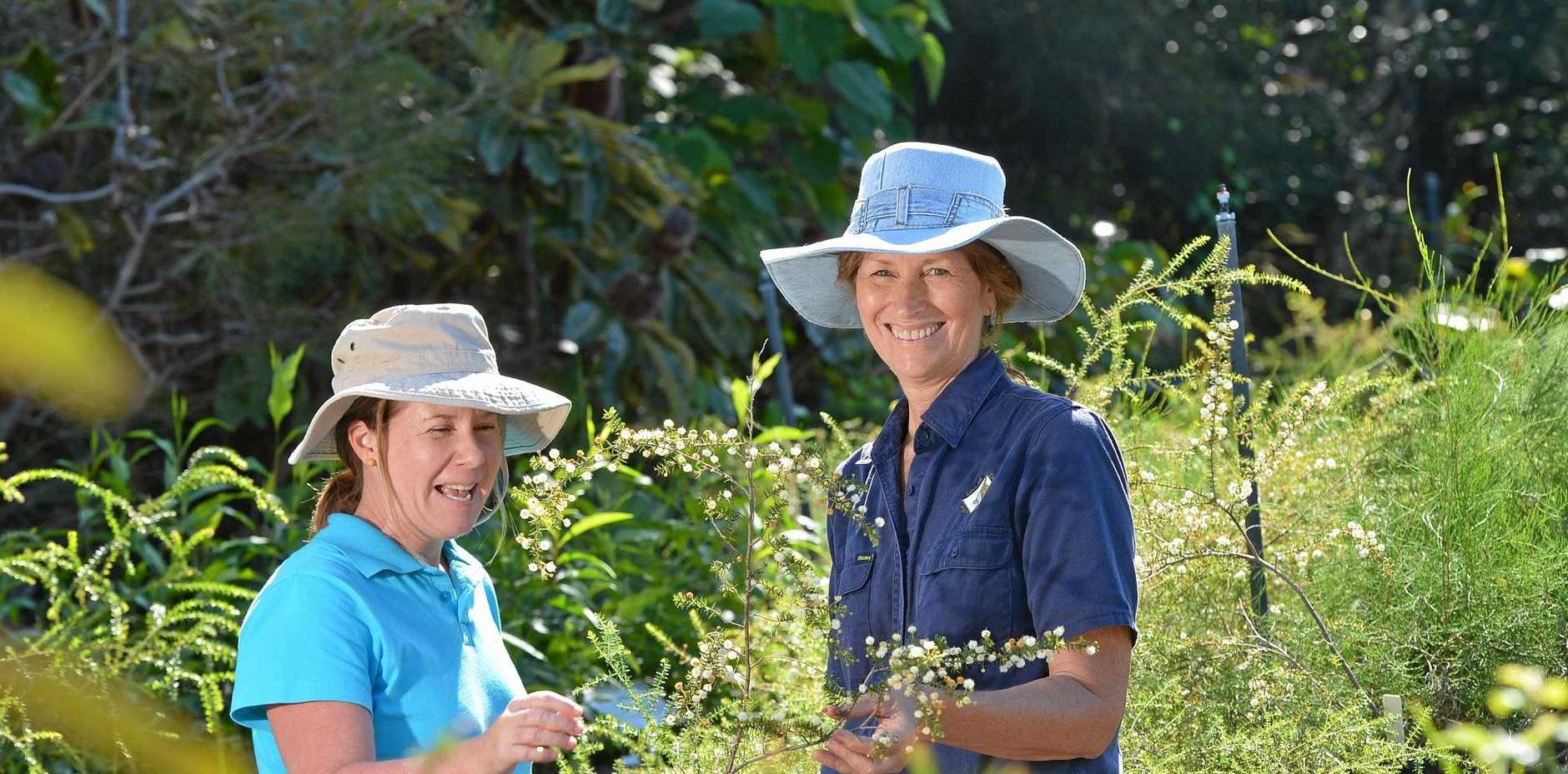 NATIVE LOVE: Fushia Collard with volunteer Lesley Thornton.