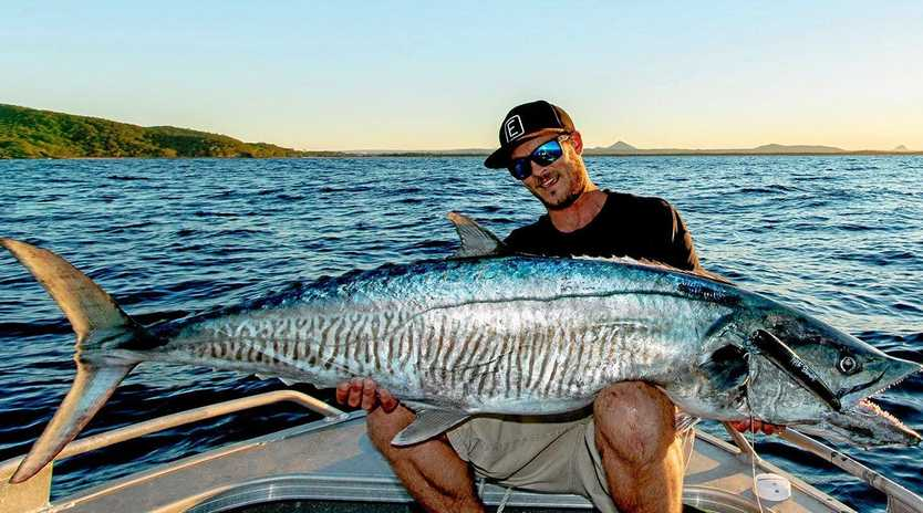Glenn Thomas caught this 118cm cobia on an overnighter to Double Island Point. It went for a pilchard floater.