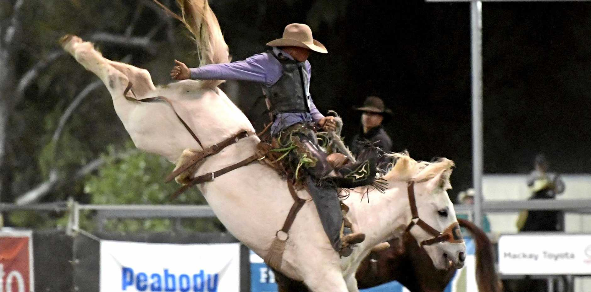 RIDE EM COWBOY: Cameron Webster on Cajoun Man at last year's Nebo Rodeo.