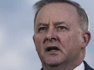 Albanese 'understands vital transport role' says ATA