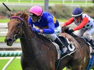 Gem out to sparkle in Sires