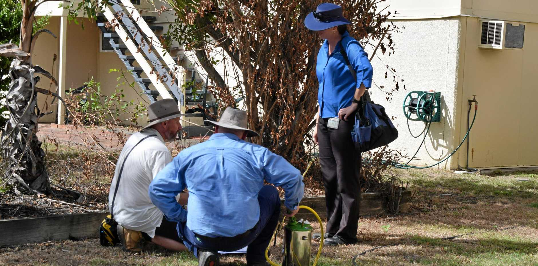 Health officials door-knocked to alert residents about dengue fever being diagnosed in their suburb.