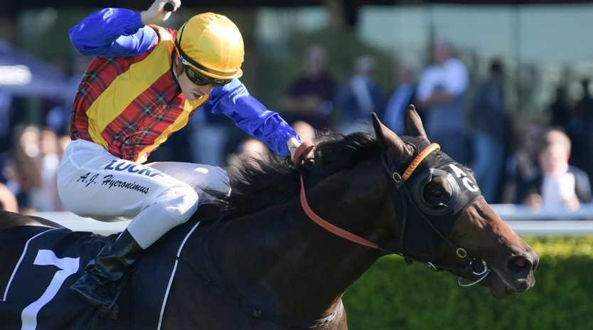 Adam Hyeroninmus rides Prince Fawaz to victory at Randwick.