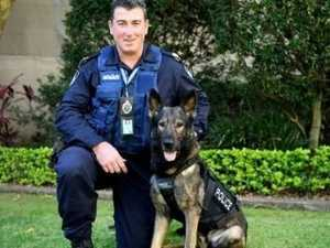 Police dog dies tracking Harristown break and enter suspect