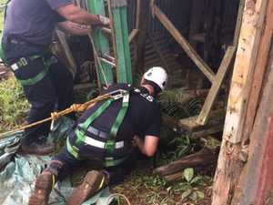 Farm dog saved from well in dramatic rescue