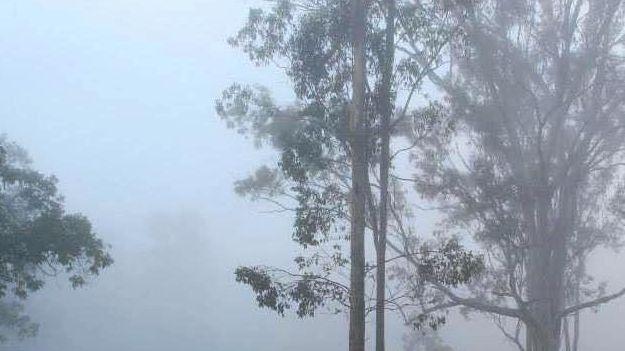 COOL CHANGE: Bundaberg will see minimums of 9 degrees this week.