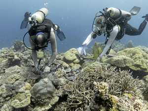 Turning tide on thought about our oceans