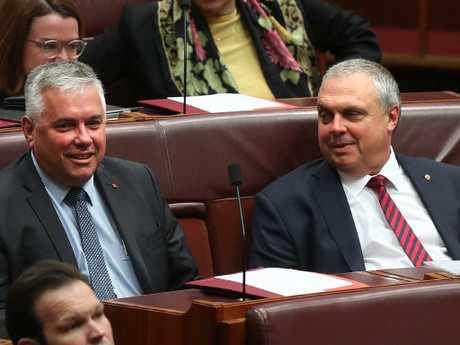Senator Rex Patrick and Senator Stirling Griff in the Senate Chamber. Picture Kym Smith