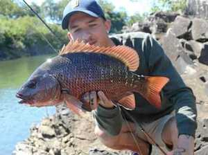 How winter will shake up fishing for Mackay anglers