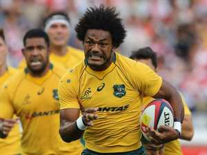 Wallabies flyer bucks Brumbies for Reds