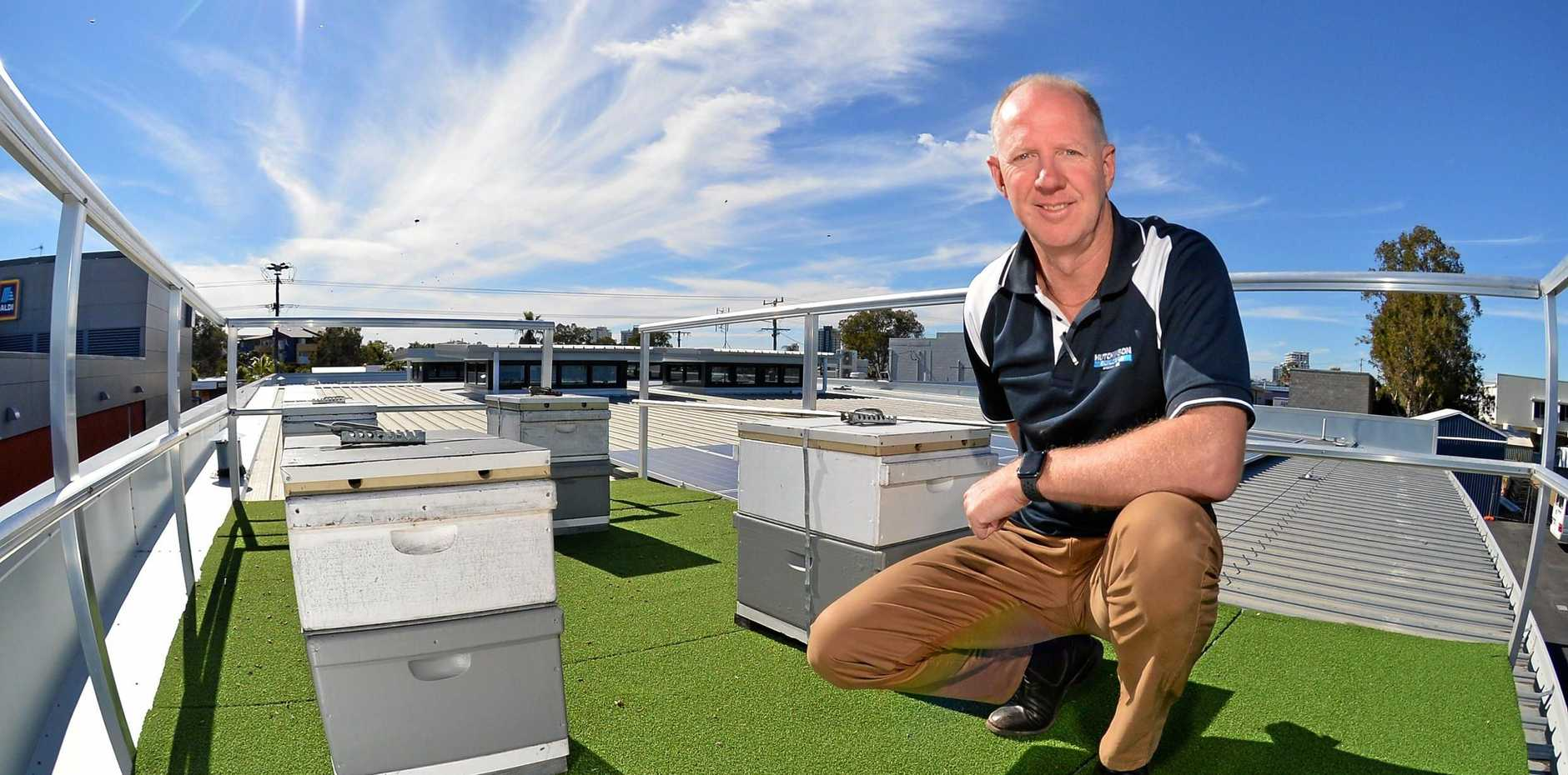 BUZZING: Hutchinson Builders Sunshine Coast Area Manager Michael Michell and the four beehives on the roof of their new headquarters in Aerodrome Rd, Maroochydore,and below, the finished product.
