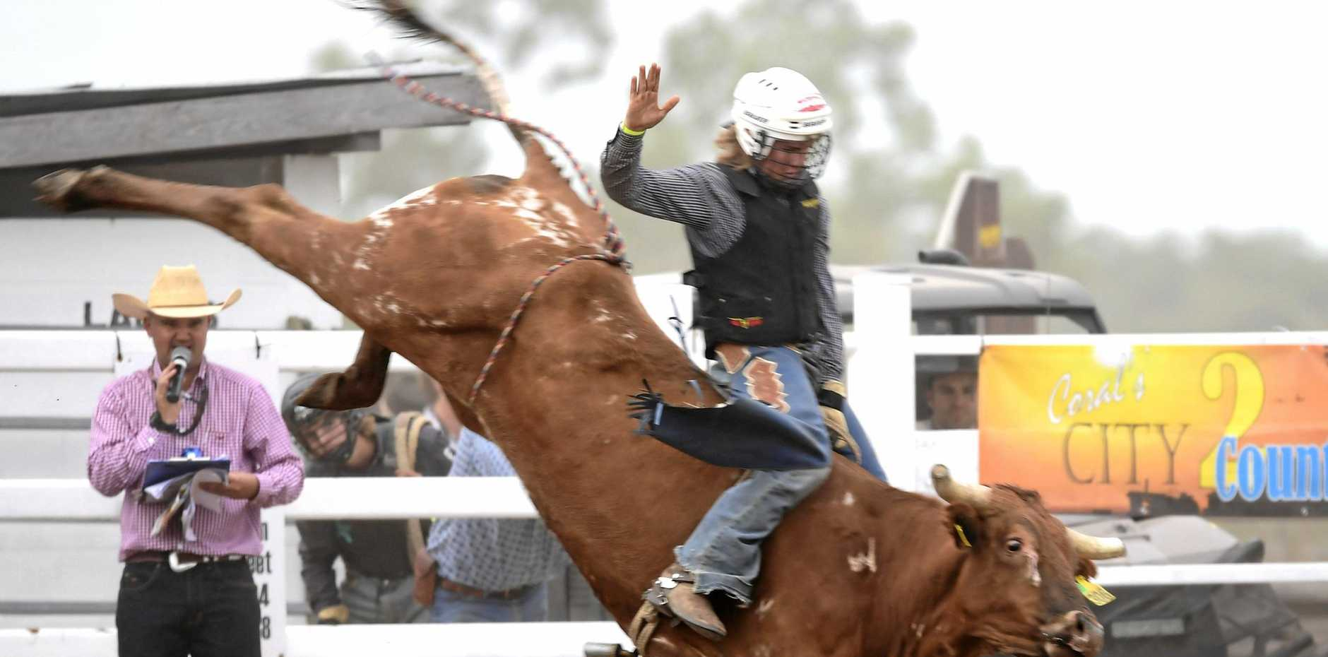 BANG FOR YOUR BUCK: Lane Johns Jnr in the steer ride at a past edition of the Bowen River Rodeo and Campdraft.