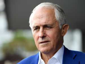 Turnbull scores plum new job