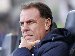 Stajcic sacking inquiry even more urgent after FFA apology