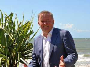 Albanese urges government to 'fess up' on Smethurst raid
