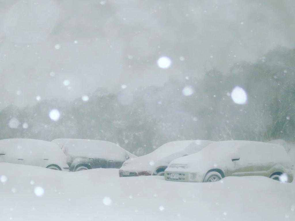 Cars covered with snow at Mount Baw Baw last week.
