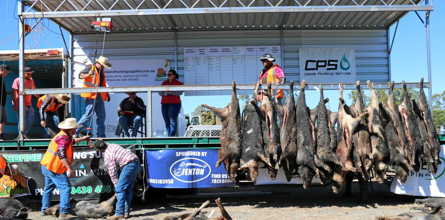 ON TARGET: The King and Queen of the CQ Big Boar Competition will be on at the Jambin Hotel this weekend.