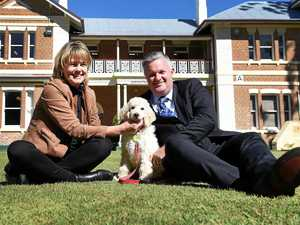 Furry new friend arrives on all fours at M'boro State High