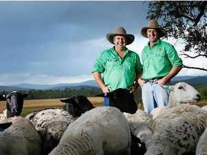 Kilkivan farmers' pork belly has starring role on MasterChef