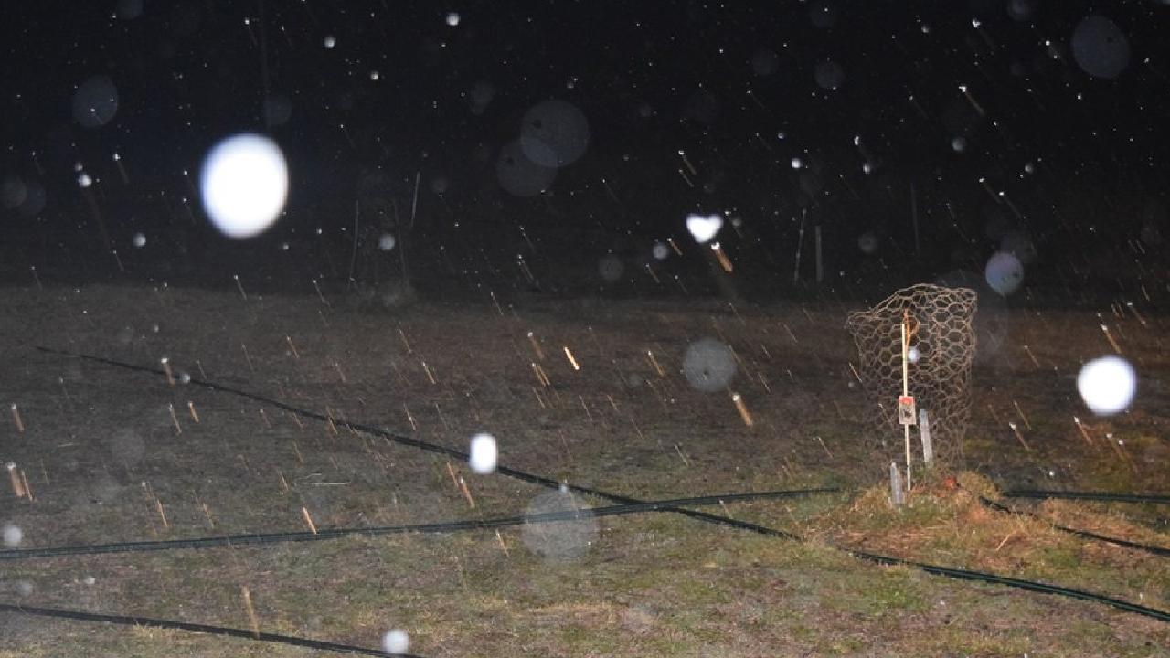 Sleet falling in Eukey in the early hours of June 4.
