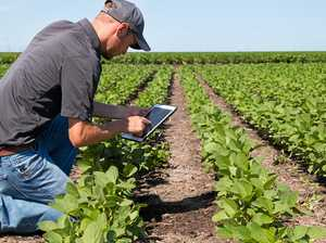 What is the future of farming?