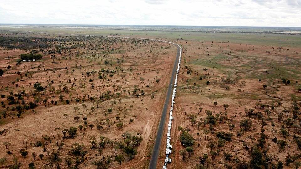 RECORD ATTEMPT: The line of caravans stretched as far as the eye could see.